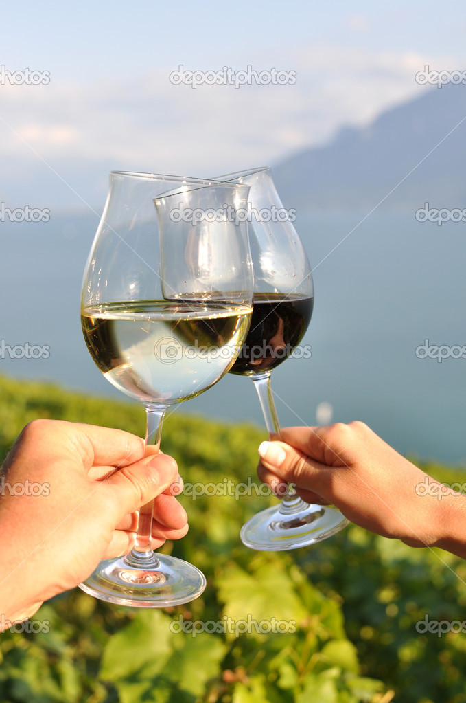 Two hands holding wineglases against vineyards in Lavaux region, Switzerland — Stock Photo #8300396