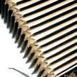 Stock Photo: Accordion Bellows