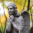 Stock Photo: Stone Angel