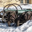 Stock Photo: Historic Cannons
