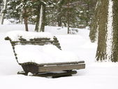 Bench under snow winter park — Stock Photo