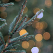 Christmas Tree — Stockfoto #8040008