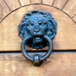 Door Knocker — Stock Photo #8040152