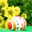 Easter Egg and Chick — Stock Photo