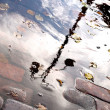 Rain water puddle — Stock Photo #8041713