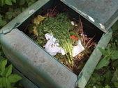 Black plastic compost bin in allotment garden — Stock Photo