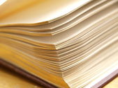 Close-up of open book. — Stock Photo