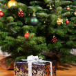 Gift under the Christmas tree — Stock Photo