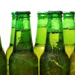 Row of beer bottles — Stock Photo #8317889