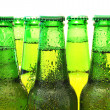 Row of beer bottles — Stock Photo #8317914