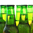 Row of beer bottles - Stock Photo