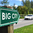 BIG CITY road sign — Stock Photo #8318073