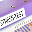 STRESS-TEST folder on a market report — Stock Photo #8318168