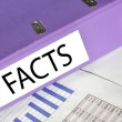 FACTS folder on market report — Stock Photo #8318197