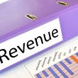 REVENUE folder on market report — Stock Photo #8318224