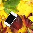 Cell phone on the autumn leaves - Stock Photo