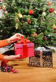 Gift box in the hands under the Christmas tree — Stock Photo