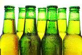 Row of beer bottles — Stock Photo