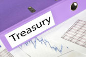 TREASURY folder on a market report — Stock Photo