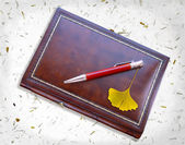 Notebook and ginkgo — Stock Photo