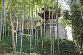 Bamboo mountain garden — Stockfoto
