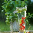 Fresh water with red currant - Stock Photo
