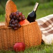 Stock Photo: Picnic basket