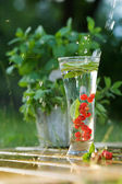 Fresh water with red currant — Stock Photo