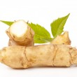 Jerusalem artichokes — Stock Photo #10547941