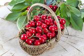 Basket of red cherries — Stock Photo