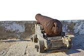 Cannon — ストック写真
