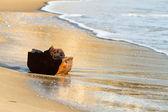Wood on the beach — Stock Photo