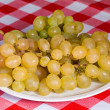 Grapes — Stock Photo #8800480