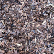 Mulch for background bark — Stock Photo
