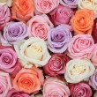 Pastel rose wedding flowers — Stock Photo #10053621