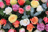 Rose bouquet in bright colors — Stock Photo