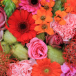 Mixed floral arrangement — Foto Stock