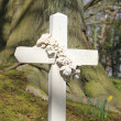 Cross grave headstone — Stock Photo #10078840