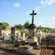 Stockfoto: Old cemetery in Provence, France