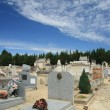 Stock Photo: Old cemetery in Provence, France
