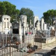 Old cemetery in Provence, France — Stock Photo #10642036