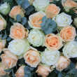 Soft orange and white rose arrangement — Stock fotografie