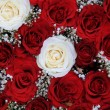 Red and white roses in a valentine's bouquet — Photo