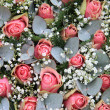 Pink roses, eucalytus and gypsophila — Stock Photo
