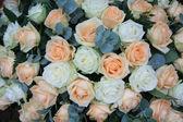 Soft orange and white rose arrangement — Stock Photo
