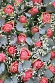 Pink roses, eucalytus and gypsophila — Stock Photo