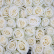 Group of white roses after rainshower — Stock Photo #8612337