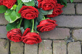 Red rose sympathy flower arrangement on pavement — Stock Photo