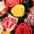 Mixed rose bouquet in bright colors — Stock Photo #8651158