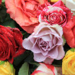 Mixed rose bouquet in bright colors — Stock Photo #8651273